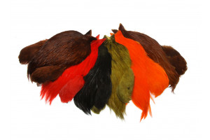 FF Rooster Cape